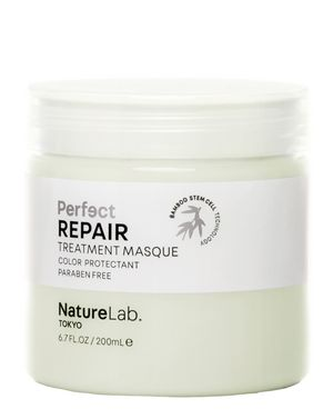 Perfect Repair Masque