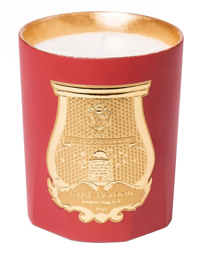 Cire Trudon Odeurs d'Hiver Lumière (Leathery Amber)